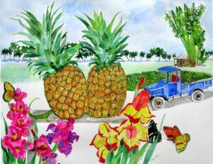 Ripe Pineapples Ready